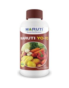 maruti-yoyo