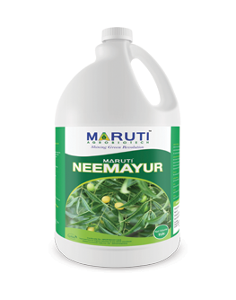 neemayur